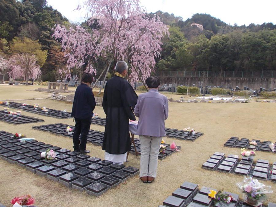 桜下庭園樹木葬
